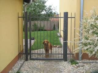 Zakázková-zámečnická výroba-oplocení,ploty,brány,branky,Brno (8)